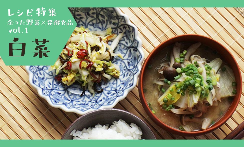 RECIPE特集|安売り時に大活用!「白菜」を発酵食で使い切るレシピ4選