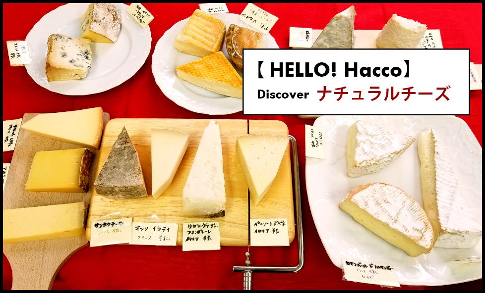 【HELLO!Hacco】vol.1 チーズ専門店で知るチーズの世界にぞっこん