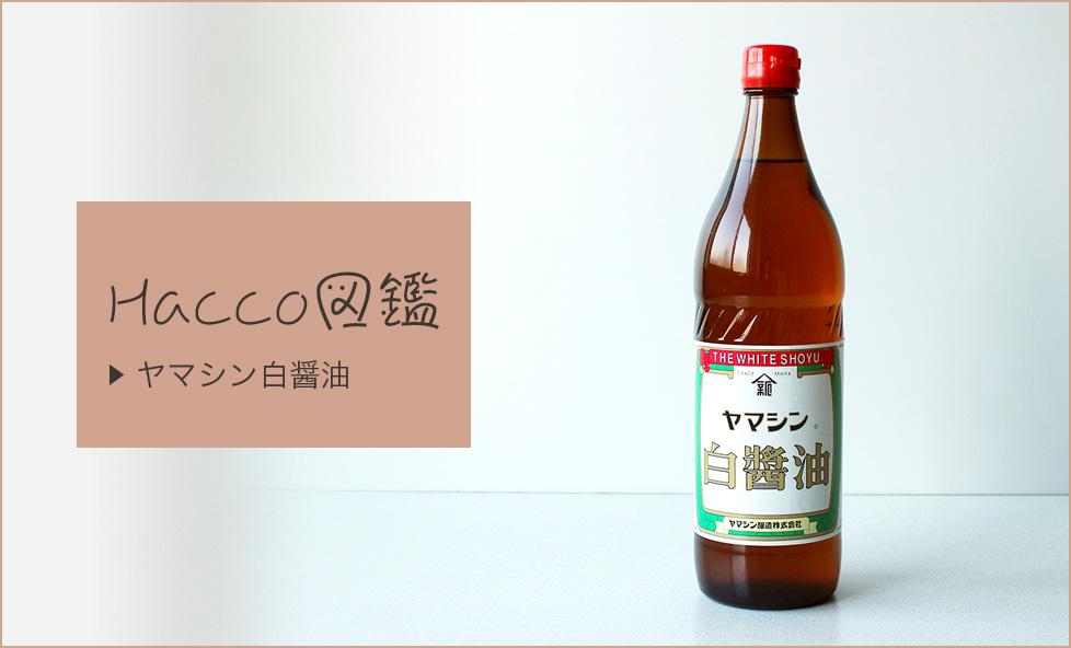 【Hacco図鑑】江戸の食糧庫・三河地方で生まれた、職人手作りの「ヤマシン白醤油」