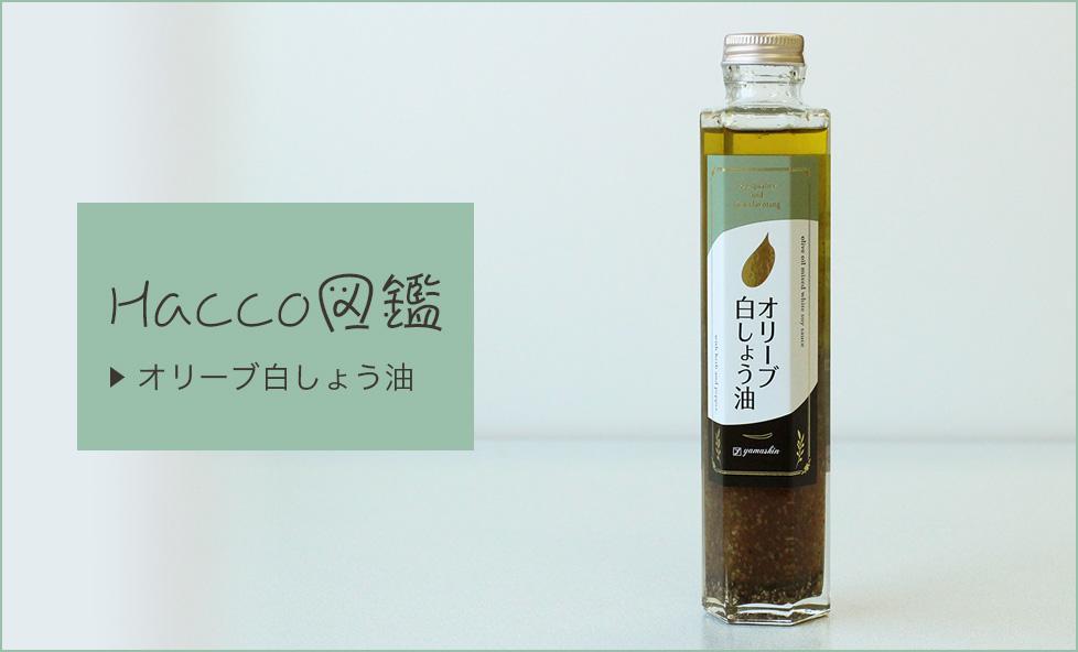 【Hacco図鑑】手軽に本格イタリアン!白醤油のいいところが詰まった「オリーブ白醤油」