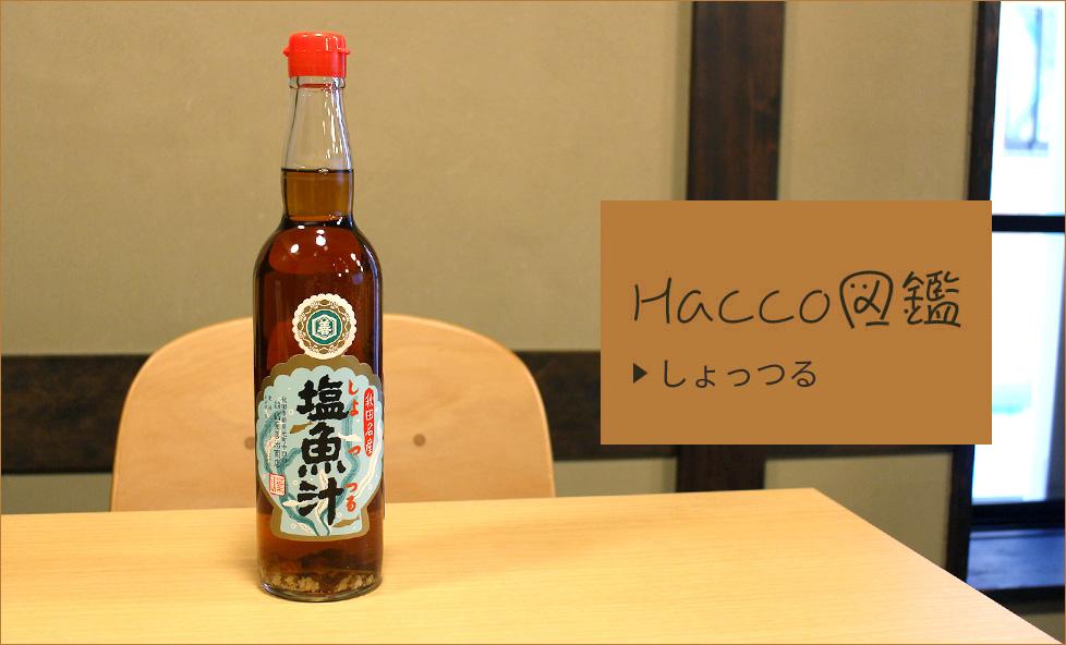 【Hacco図鑑】世界三大魚醤 「しょっつる」